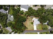 View 923 Hillside Dr Lutz FL