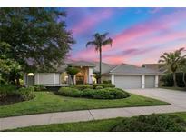 View 14210 Banbury Way Tampa FL