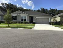 View 11406 Blue Woods Dr Riverview FL