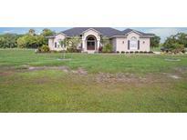 View 10607 Lithia Estates Dr Lithia FL