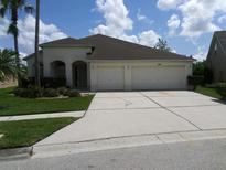 View 18313 Cypress Haven Dr Tampa FL