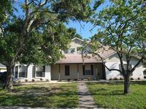 View 3405 Jamais Wood Way Tampa FL