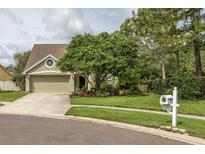 View 14520 Thornfield Ct Tampa FL