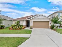 View 11421 Tangle Branch Ln Gibsonton FL