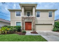 View 19128 Meadow Pine Dr Tampa FL