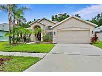 View 8267 Swann Hollow Dr Tampa FL