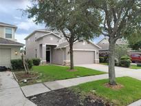 View 1023 Windton Oak Dr Ruskin FL