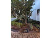 View 4762 Fox Hunt Dr # 317 Wesley Chapel FL