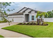 View 13410 Lakeview Oaks Ln Riverview FL