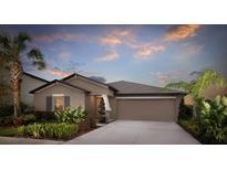 View 10356 Scarlet Skimmer Dr Riverview FL