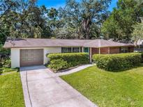 View 1010 Thru Rd Tampa FL