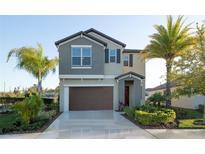 View 4213 Romano Busciglio St Tampa FL