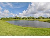 View 2217 Oakley Green Dr # 38 Sun City Center FL