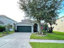 View 9202 Lost Mill Dr Land O Lakes FL