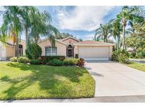 View 1027 New Winsor Loop Sun City Center FL