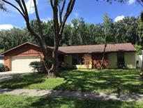 View 5314 Black Pine Dr Tampa FL