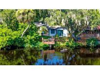 View 1506 E Park Cir Tampa FL