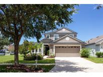 View 8621 Sandy Plains Dr Riverview FL