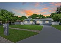 View 4411 Gandy Cir Tampa FL
