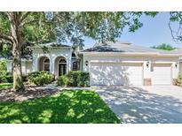 View 15410 Carrillon Estates Blvd Tampa FL