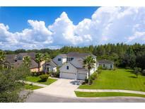View 10505 Mistflower Ln Tampa FL