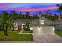 View 14617 Coral Berry Dr Tampa FL