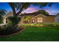 View 4003 Canter Ct Valrico FL