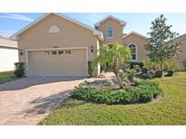 View 19314 Red Sky Ct Land O Lakes FL
