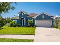View 8316 Sky Eagle Dr Tampa FL