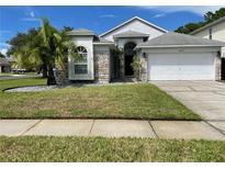 View 12533 Deerberry Ln Tampa FL