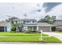 View 4716 Bullock Ct Tampa FL
