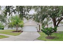 View 7014 Crown Lake Dr Gibsonton FL