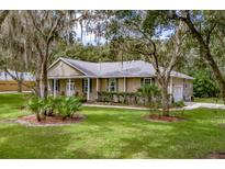 View 18908 Adams Country Way Lutz FL