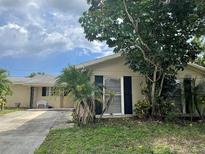 View 6508 Lenore Dr Tampa FL