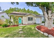 View 12416 Pepperfield Dr Tampa FL