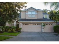 View 11918 Northumberland Dr Tampa FL
