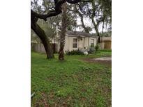 View 1802 E Annie St Tampa FL
