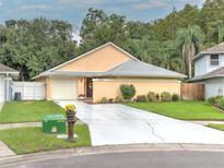 View 5926 Bitterwood Ct Tampa FL