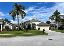 View 18104 Misty Blue Ln Tampa FL