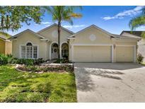 View 4943 Ebensburg Dr Tampa FL