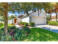 View 7006 Forest Mere Dr Riverview FL