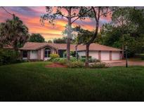 View 3105 Mossvale Ln Tampa FL
