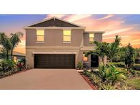 View 10231 Bright Crystal Ave Riverview FL