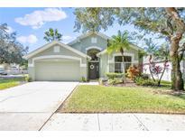 View 10437 Springrose Dr Tampa FL