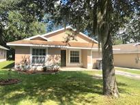 View 11704 Lynn Brook Cir Seffner FL