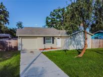 View 14123 Arbor Hills Rd Tampa FL