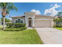 View 14449 Pepperpine Dr Tampa FL