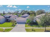 View 10427 Soaring Eagle Dr Riverview FL