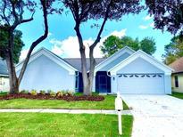 View 18213 Cypress Stand Cir Tampa FL