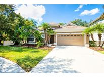View 15610 N Himes Ave Tampa FL